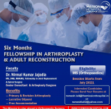 Arthroplasty fellowship